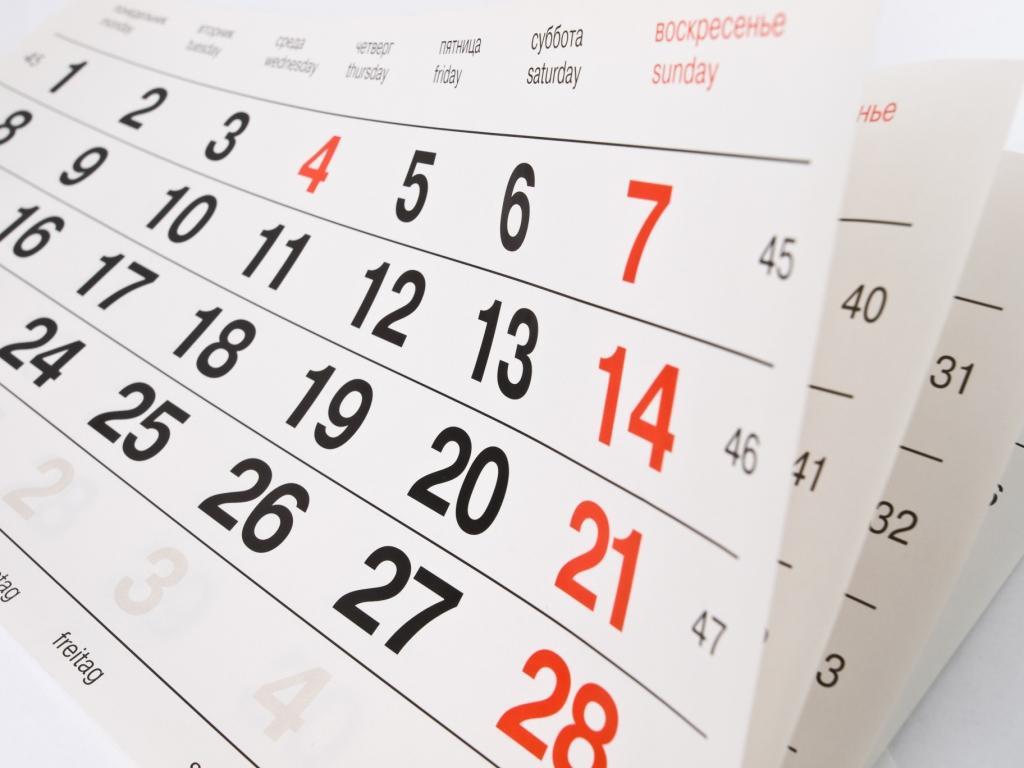Pequenitos da Fanfarra ilustram calendário de 2016