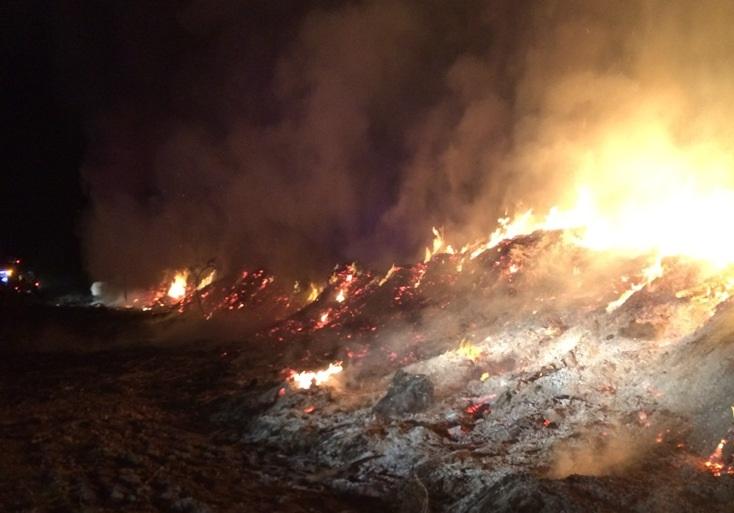 Incêndio juntou três corporações em Vale das Hortas